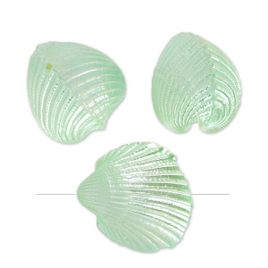 Perle conchiglie 20 mm Menta madreperlato x5