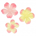 Assortimento di 40 fiori in tessuto Begonia Light Rose