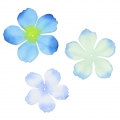 Assortimento di 40 fiori in tessuto Begonia Light Blue